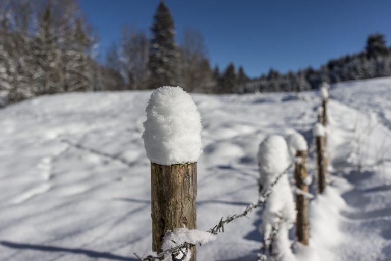 Weidezaun im Winter