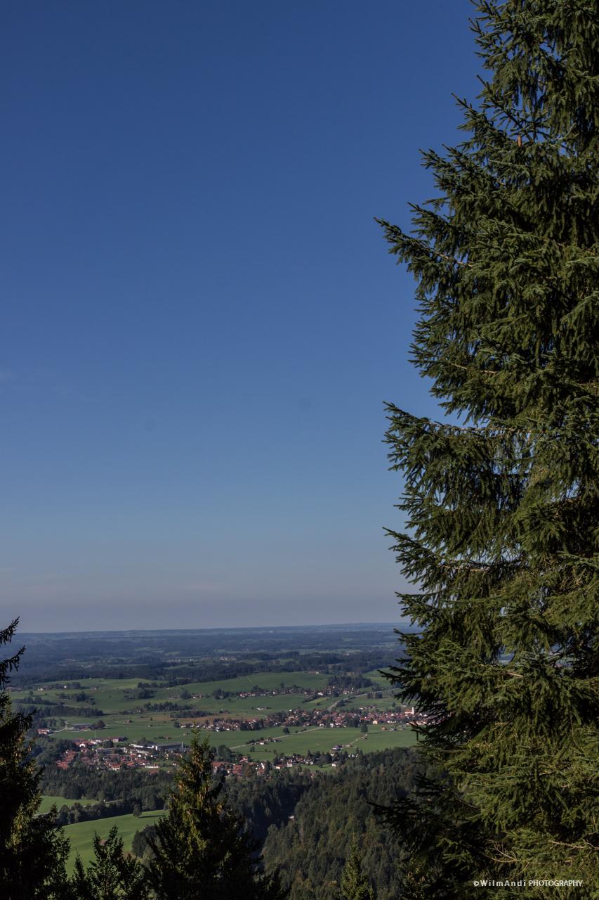 Auf dem Buchenberg