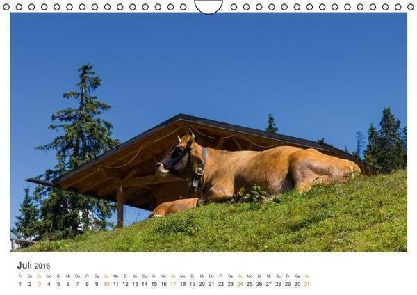wilmandi-blog-kalenderblatt-juli2016