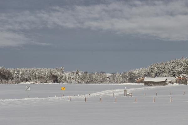 wilmandi-blog-steingaden-winter-2019-7