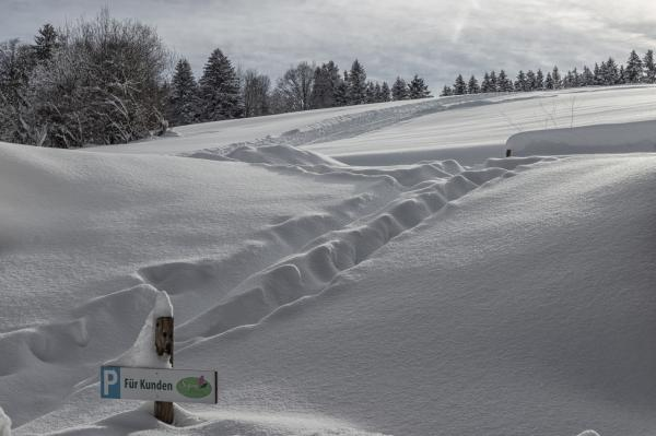 wilmandi-blog-steingaden-winter-2019